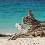 Things to Do in Holguin, Cuba