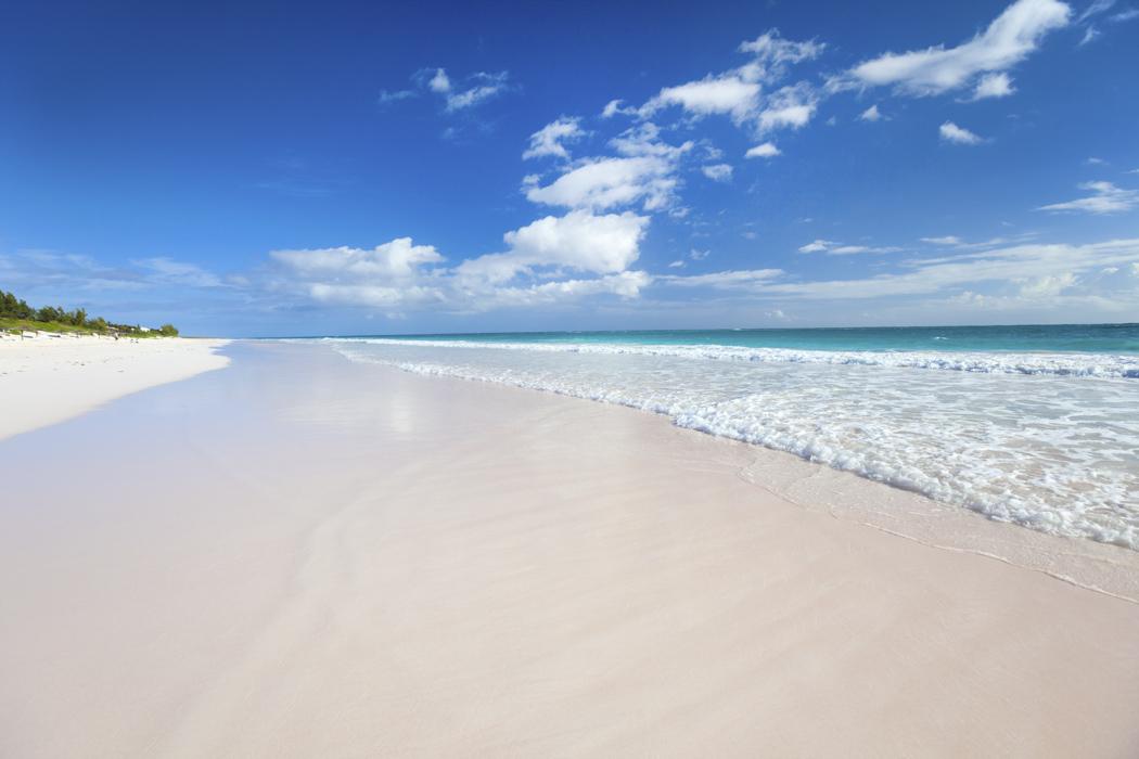beach wedding in Harbour Island, Bahamas