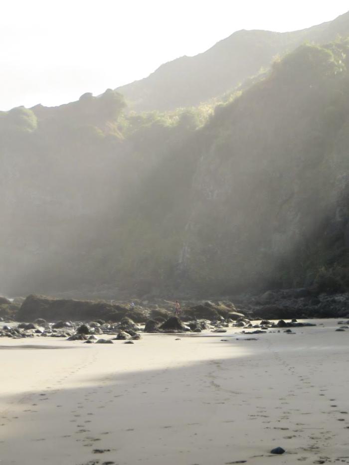 Te Henga (Bethells Beach), New Zealand