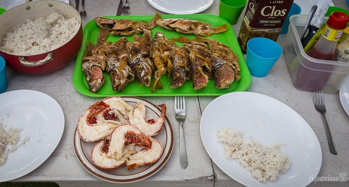 red snappers and lobster for dinner on san blas islands