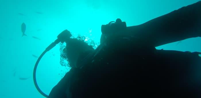 Galapagos Scuba Diving Certification – SNSI for $250