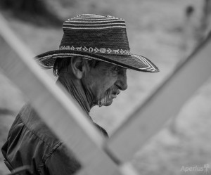 panama man with hat