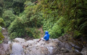 view from waterfall boquete cloud forest